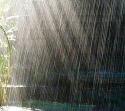Приворот во время дождя